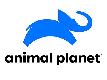 Logo Animal Planet od roku 2018